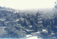 興教寺村民挖出稀世珍寶,當作水槽盆景用了15年