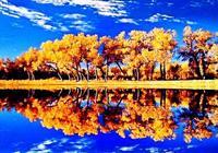 3000年的守望,最美的秋天只為等你!