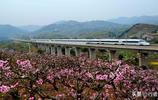四川境內第一條時速300公里的高速鐵路:成渝高鐵