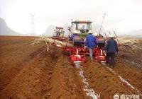 廣西蔗業是否實現機械化耕作了?有人說,廣西蔗業走向衰落了,你怎麼看?