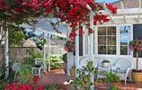 """去領導家喝茶,一進庭院就不想走了!瞧這""""小花園"""",舒適忒享受"""