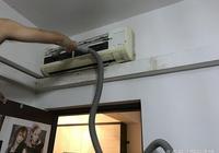 家裡的吸塵器噪音太大,主人總是被全家貓鄙視:再吵吵就拉你電閘