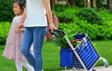 """浙江""""老人買菜車""""一夜走紅,方便省力還環保,就此告別塑料袋"""