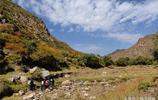看了這個景區,才知道什麼叫山河壯美江山如畫,每人只收20元門票