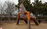 人與自然 中國﹒鄭州國際雕塑展