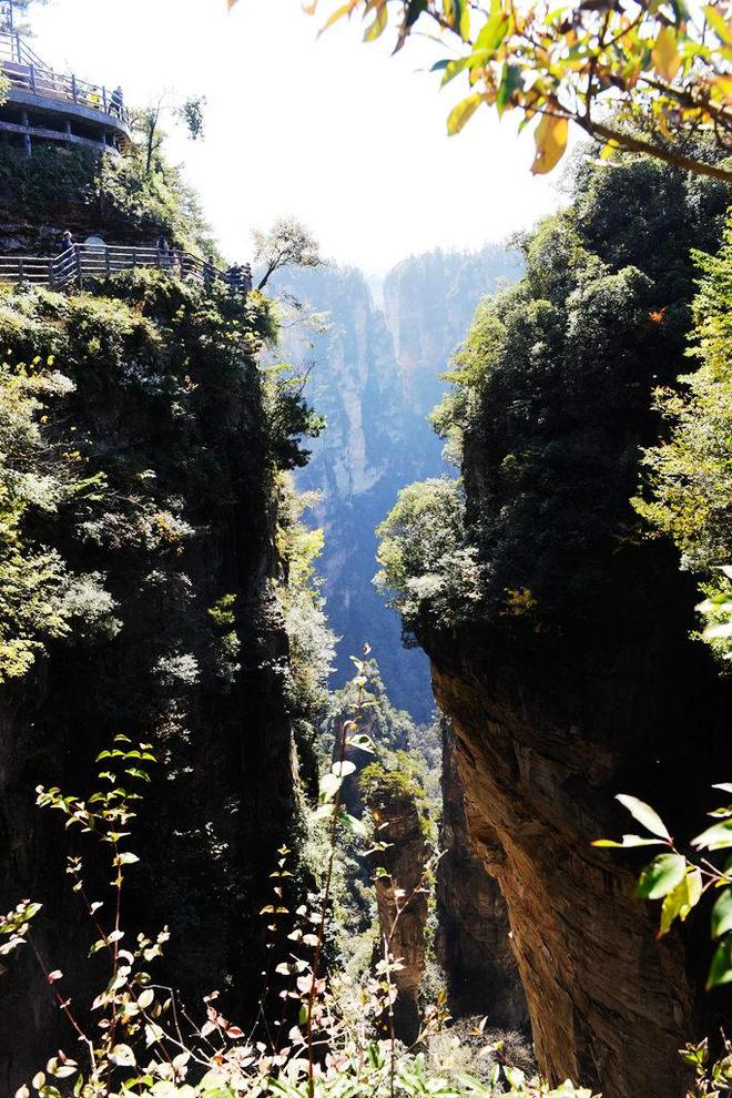 上了張家界的武陵源 我才知道電影 阿凡達的外景地 是在這裡拍的
