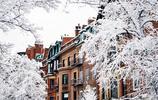 見過波士頓的冬天,才知道雪景也能美得如此溫馨