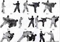 練搏擊怎能不會摔?散打摔法20例(上)教你以快制勝、以弱勝強