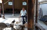 熊貓糞造紙,蔡倫古法造紙造出了最高境界