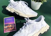 運動品牌搭上地表最火音樂節,球鞋如何成為科切拉的主角?