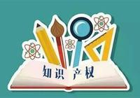 知識產權服務機構在知識產權證券化中的角色淺探