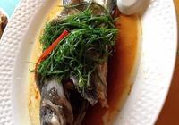 石斑魚怎麼做才好吃?