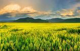 """攝影圖集:""""它""""以境內呼倫湖和貝爾湖得名——呼倫貝爾"""