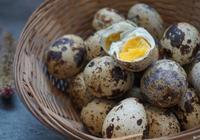 鹽焗鷓鴣蛋的做法