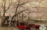 """日本上色老照片:圖六女子美麗端莊,最後一張是少見的""""姬武士"""""""