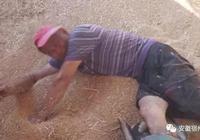 危險!幹活時失足摔倒 宿州一男子腿被吸糧機絞碎