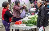 五天才趕一次集的安溪尚卿鄉,集市上沒啥人最熱鬧的地方是菜市場