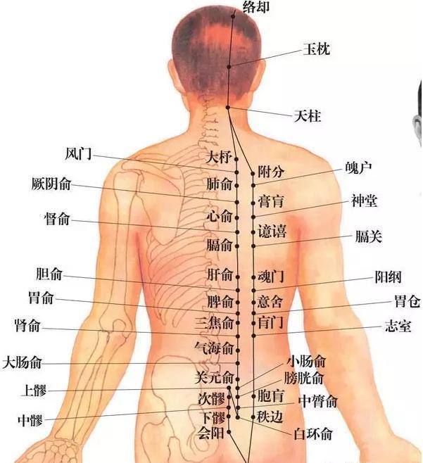 一個小動作昇陽比艾灸還快!打通膀胱經,對頸椎、腰椎都好