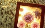 愛的延伸,表達的永恆,永生花帶給你所有的愛意
