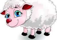 《涼州味道》之涼州涮羊肉