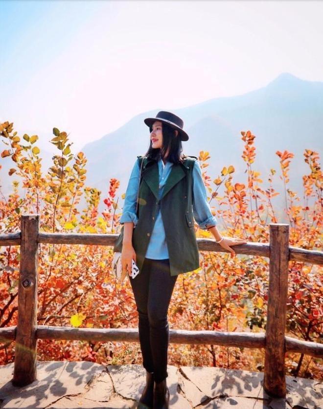又是一年秋風起,被染紅的京郊,悄悄捕獲了剛回國的我