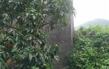 東莞:一座廢棄的客家碉樓,順樓梯而上,發現了一個罈子