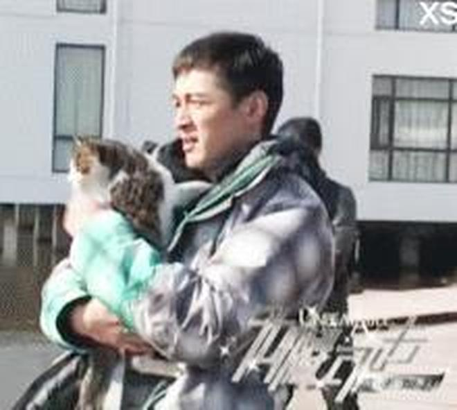 """大眾男神胡歌也淪為""""鏟屎官"""",原來老胡也養貓!簡直就是貓奴啊"""