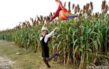 河南夏邑:3000畝高粱紅了,美女自帶攝影師高粱地裡拍大片