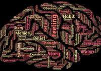 每天刷信息,你還記得昨天看過的內容嗎?