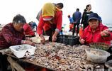 漁村拆遷 繁華漁港開始寥落 皮皮蝦5塊錢一斤 梭子蟹10塊錢一袋