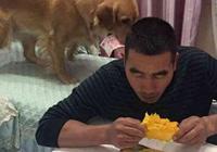 這隻金毛成精了!主人吃芒果叼來200元,狗狗:芒果我全買了!