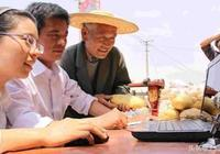 探索農村電商的新模式,促進農村電商崛起