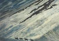 商湯曠視依圖雲從:道路長且阻,進化乃發生