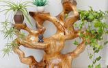 怎麼樣做一個有氣質,又有個性的花架?你見過這樣的花架嗎?