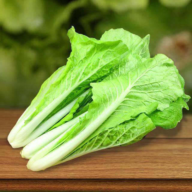 小白菜和大白菜的區別?