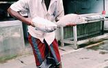 靠山吃山靠海吃海:實拍古獅子國斯里蘭卡漁民的快樂生活