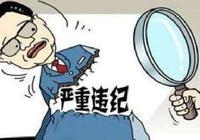 """雷桂英 張洪濤嚴重違紀被""""雙開"""""""