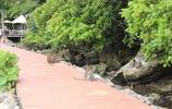 窮遊仙境:藍海游魚,斑斕的珊瑚——馬來西亞蘭卡威