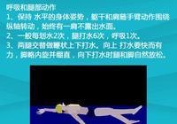 客觀規範的講,初學游泳是不是應該先學自由泳?