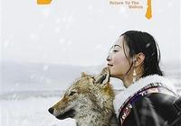 電影《重返·狼群》大連點映引發共鳴