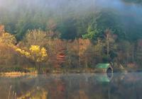 秋天正在路上,一起捕捉十月的小清新吧!這十張金秋壁紙送給你