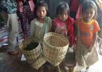農村一些老人年輕時生了很多兒女,為什麼老年還是過的寒酸悲慘?