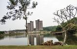 東莞松山湖園區不僅有中國第一大手機廠家華為,還有美麗的松山湖