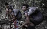 世界上有一個富有的部落,坐擁600多個島嶼,喜歡養野豬當寵物