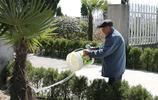 海安87歲老人信守解放前許下的承諾,義務為烈士守墓70餘載