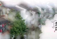 嘉興王店古鎮,水鄉梅里,這個季節賞梅訪古正當時