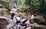 東莞清溪森林公園一日遊。