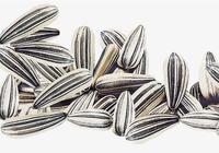 葵花籽是果實還是種子 葵花籽是堅果嗎