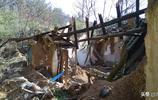 春節回老家,在空村中尋找荒蕪的童年
