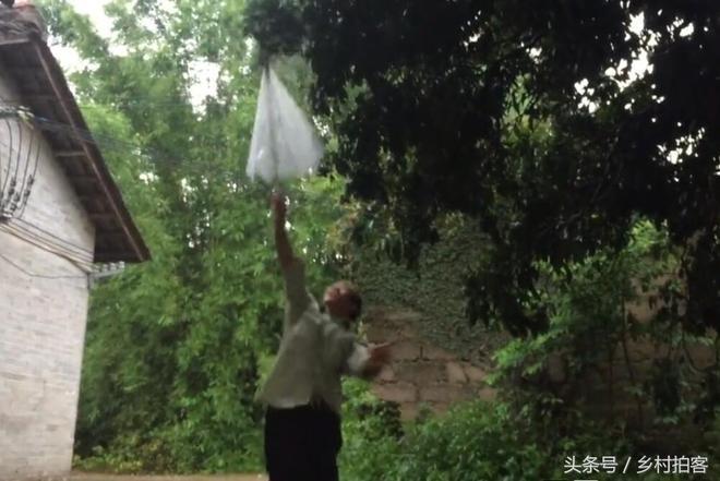 45歲農村大爺雨天外出,意外發現個紅色大寶貝,頓時樂壞了!